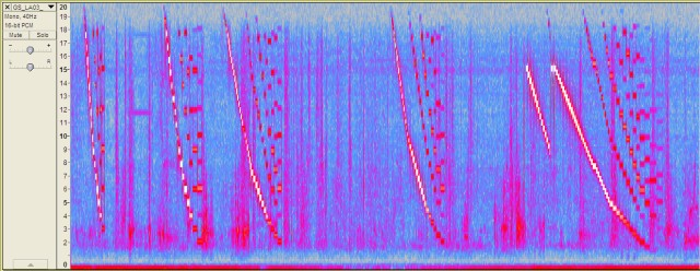 LA03_Spectrogram_2013-01-24